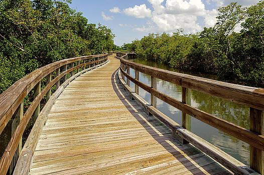 Walkway Over The Florida Salt Water Marsh  -  preservewalkway135453 by Frank J Benz
