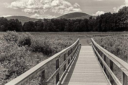 Walkway To A Mountain monochrome by Nancy De Flon