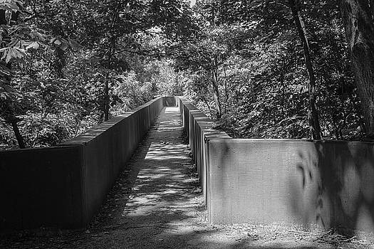 Walkway to Park by Carolyn Ricks