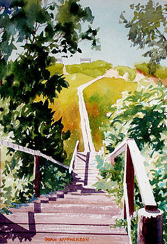 Walkway to the Beach by Joan McPherson