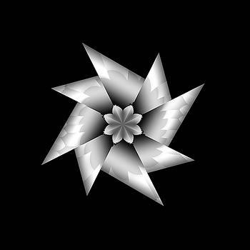 Wall Flower 2 by Fernando Margolles