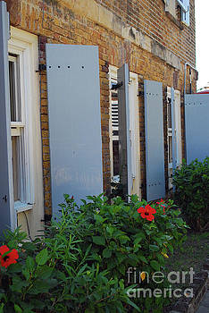 Gary Wonning - Wall flowers
