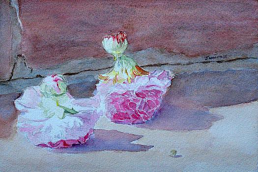 Jenny Armitage - Wall Flowers
