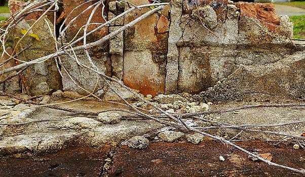 Foto Excavation # 0977 by Jeffrey Morrison