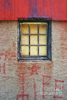 Wall Graffiti by Randy Pollard