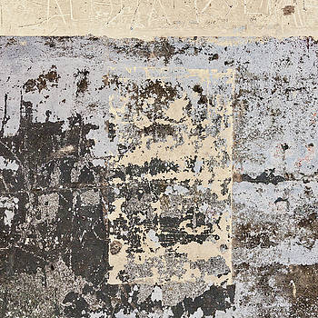 Carol Leigh - Wall Texture Number 14
