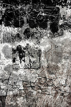 Carol Leigh - Wall Texture Number 15
