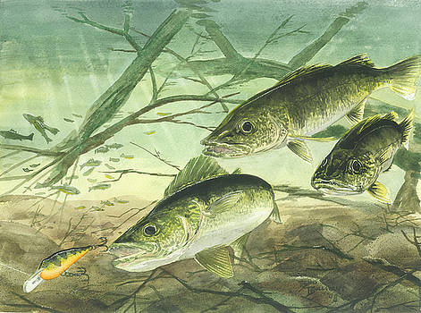 Walleyes by Bud Bullivant