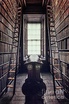 Walls Of Books by Evelina Kremsdorf