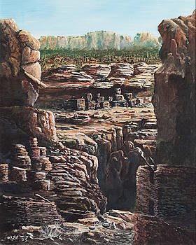 Walnut Canyon by John Wise