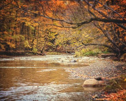 Lisa Russo - Walnut Creek in Autumn