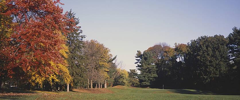 Walnut Lane No. 15 by Edwin H Voorhees III