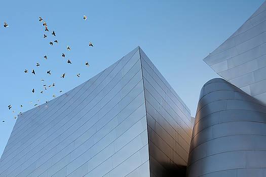 Walt Disney Concert Hall Los Angeles California Architecture Abstract by Ram Vasudev
