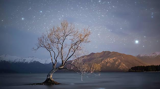 Wanaka Dreamscape by Tony Fuentes
