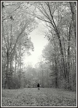 Wander-full by Shayne Johnson Fleming