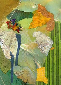 Wandering by Susan Adame