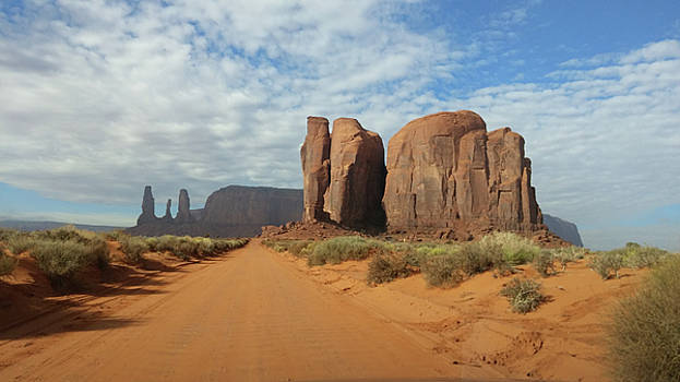 Wandering Through Monument Valley by Liza Eckardt