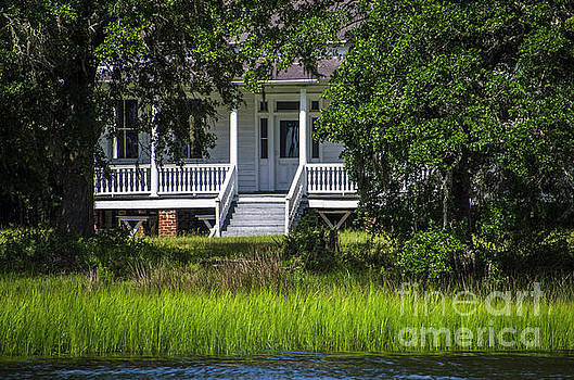 Dale Powell - Wando River Plantation - Mount Pleasant