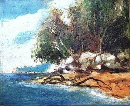 Wandoor Beach-1 by Prakash Sree S N