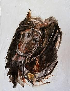 War Horse- series one by Susie Gordon