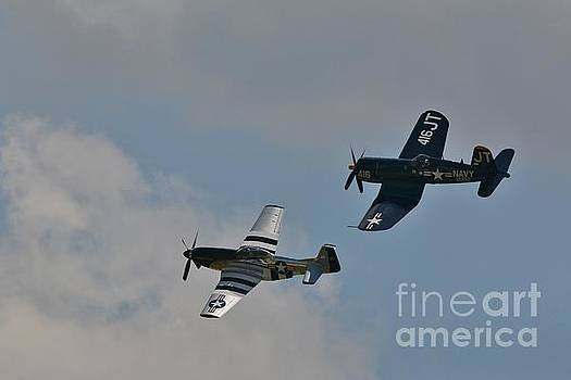 Warbirds of Another Era by Tony Lee