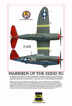 Warbirds Of The 332ND FG by Jerry Taliaferro