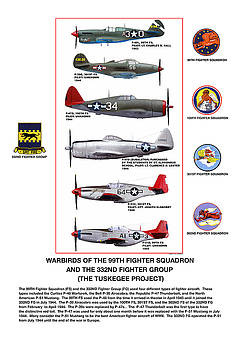 Warbirds Of The 99TH Fighter Squadron and 332ND Fighter Group   Tuskegee Project by Jerry Taliaferro