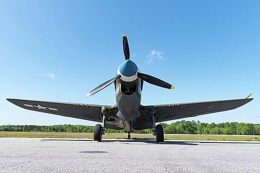 Warhawk at Rest - 2018 Christopher Buff, www.Aviationbuff.com by Chris Buff