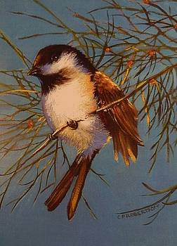 Warm Sunshine, Happy Chickadee by Catherine Robertson