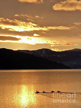 Warm Water by Victor K