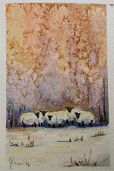 Warm winter sheep by Mona Davis