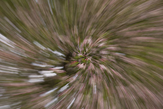 Warp Speed Spiral by Michael Wall
