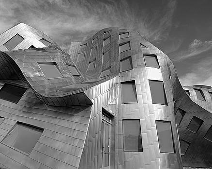 Warped Building No. 2 by Richard Hinds