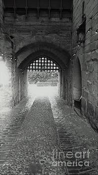 Warwick Castle 4 by John Williams