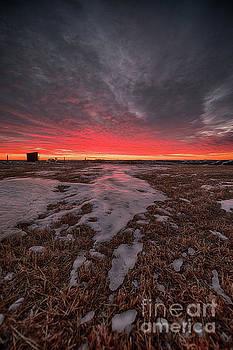Wascana Dawn by Ian McGregor