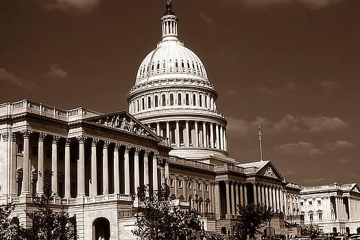 Peter Potter - Old Washington Photo - National Capitol Building