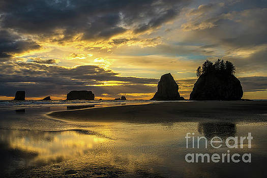 Washington Coast Golden Sunset by Mike Reid