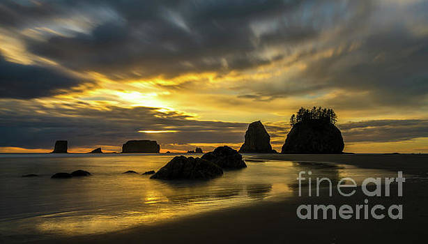 Washington Coast Golden Tides by Mike Reid