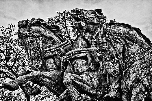 Val Black Russian Tourchin - Washington DC Memorial Detail No 4