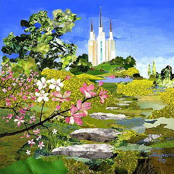 Washington DC Temple by Robin Birrell