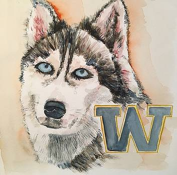Washington Huskies by Elaine Duras