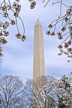 Washington Monument by Jean Haynes