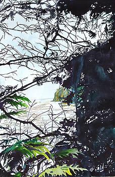 Washington Shoreline by Karen Merry