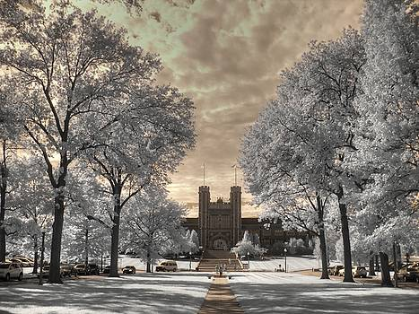 Washington University by Jane Linders