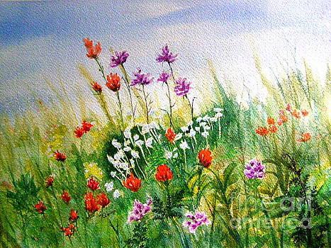 Washington Wildflowers by Lynn Quinn