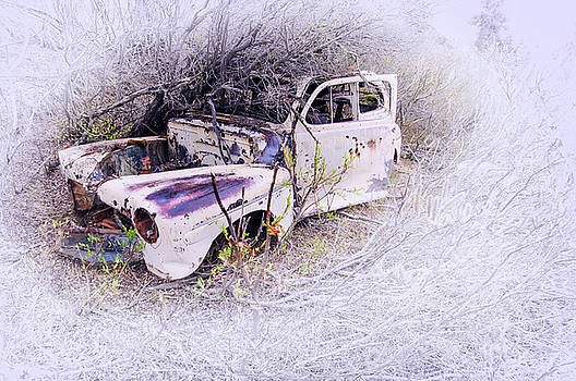 Wasted Volvo by Ron Day