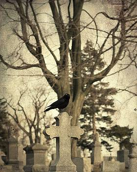 Gothicrow Images - Watching Crow On Old Cross
