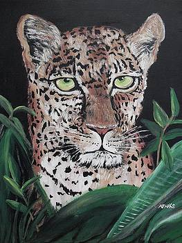 Watching Leopard by Aleta Parks