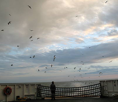 Watching Seagulls on The Cape May Lewes Ferry by Kathy Barney