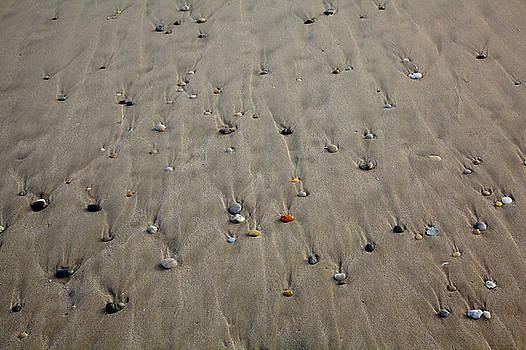 Watching the tide by Steve Gravano